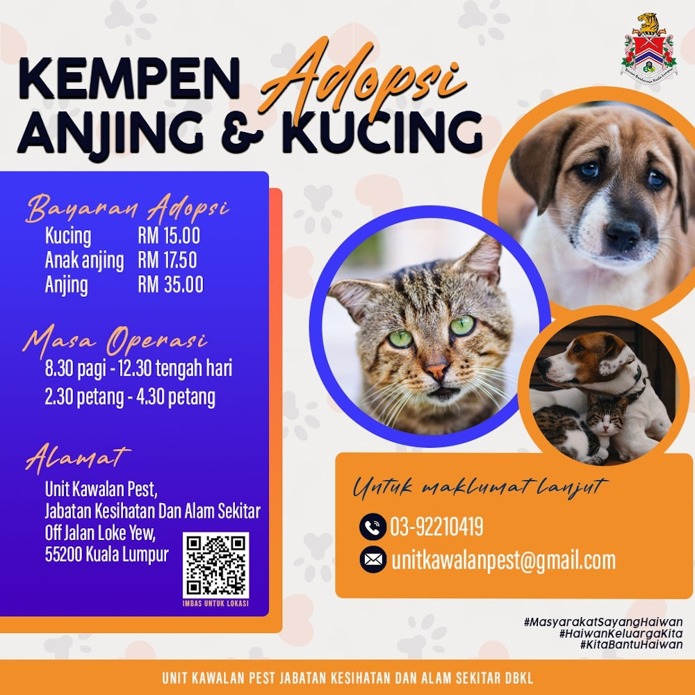 Anybody interested in adopting the strays in DBKL's animal pound should get an appointment first before visiting the centre. — Picture via Facebook/DewanBandarayaKualaLumpur