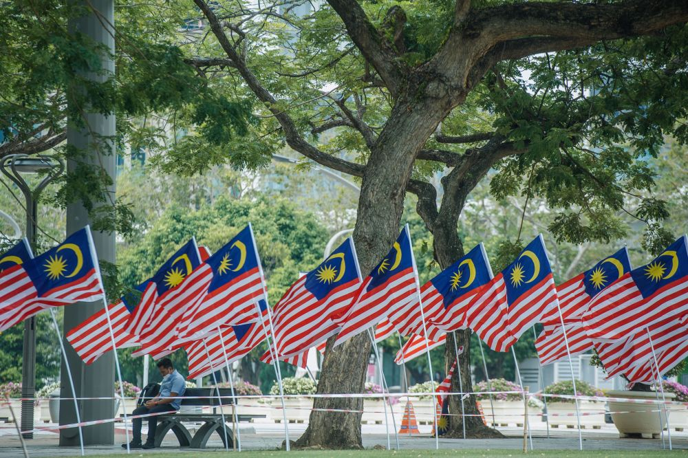 Malaysian flags are pictured in Putrajaya August 12, 2021. — Picture by Shafwan Zaidon