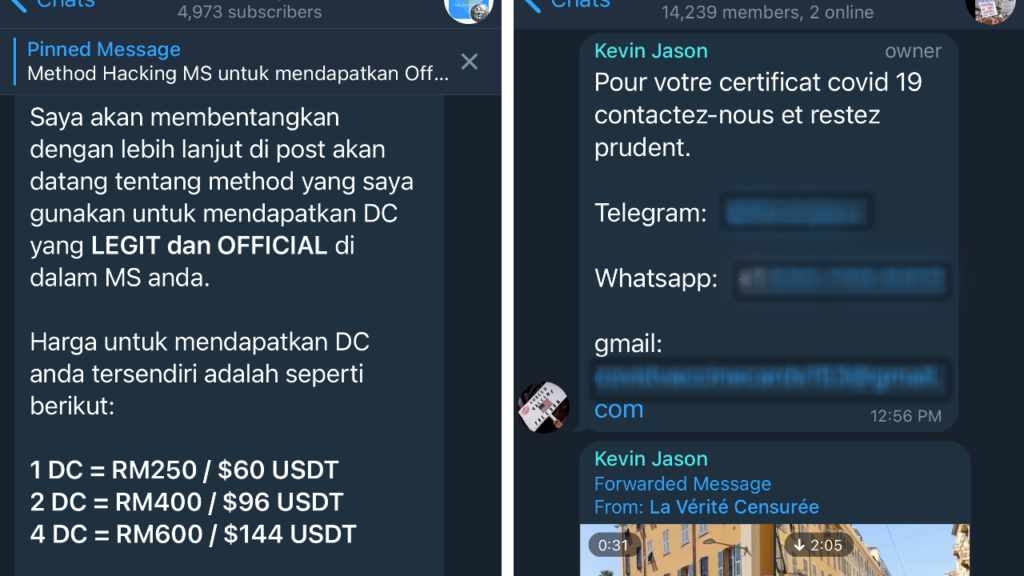 """Telegram channel offering """"digital certificates"""" to Malaysians, at left, and a dealer asking French buyers to contact for vaccine cards. Photos: Coconuts"""