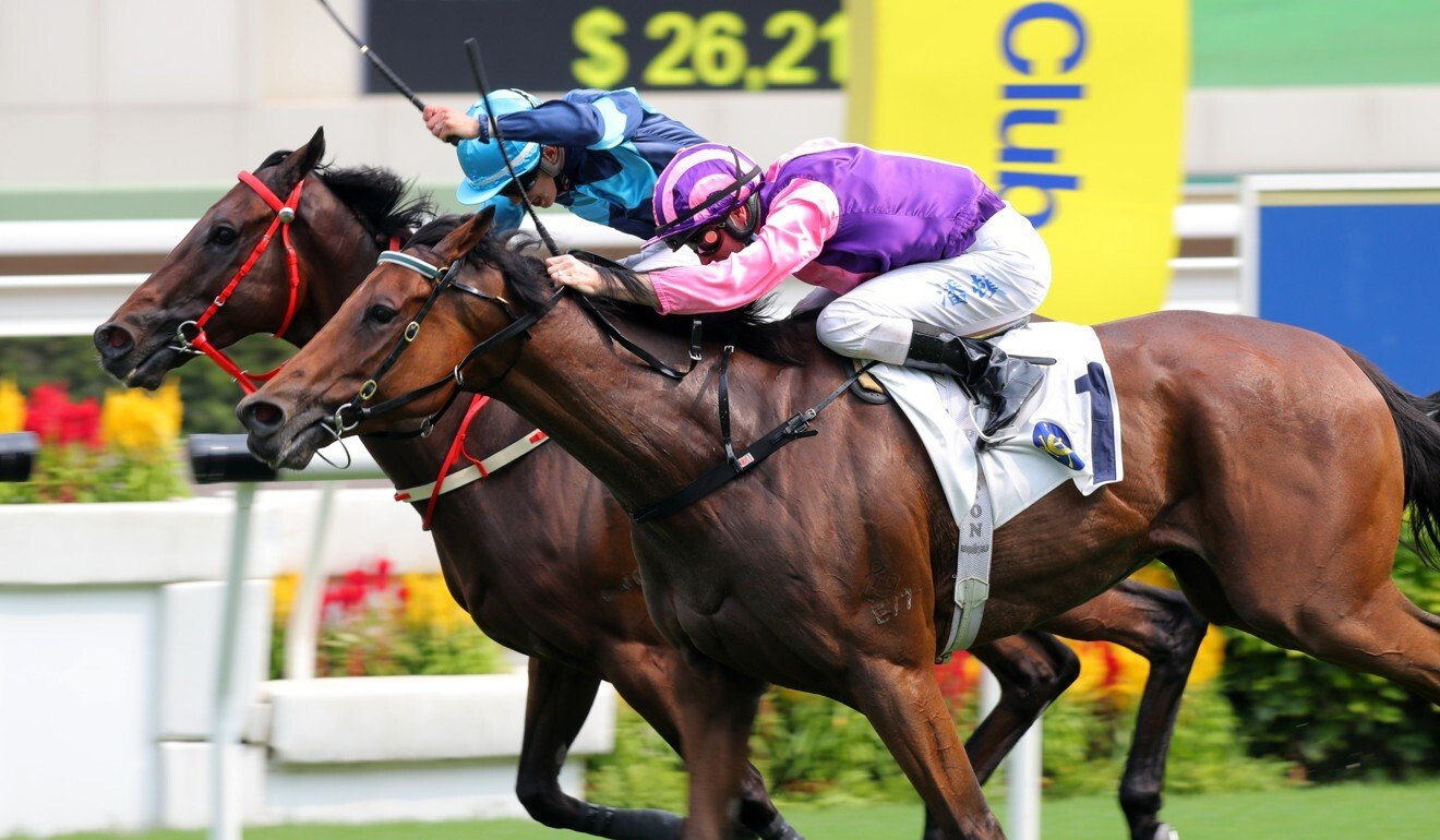 Purton drives King's Capital to the line, edging out Solar Power.
