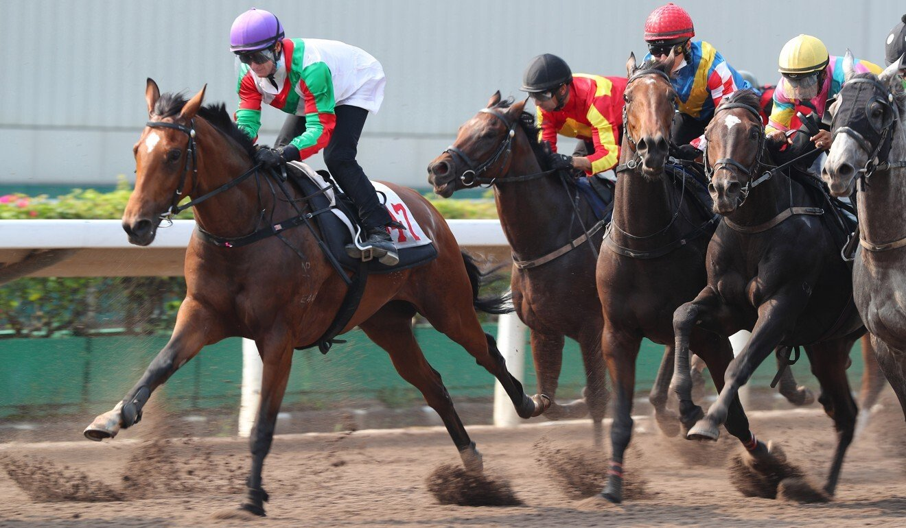 Zac Purton trials Solid Impact on the dirt at Sha Tin last month.