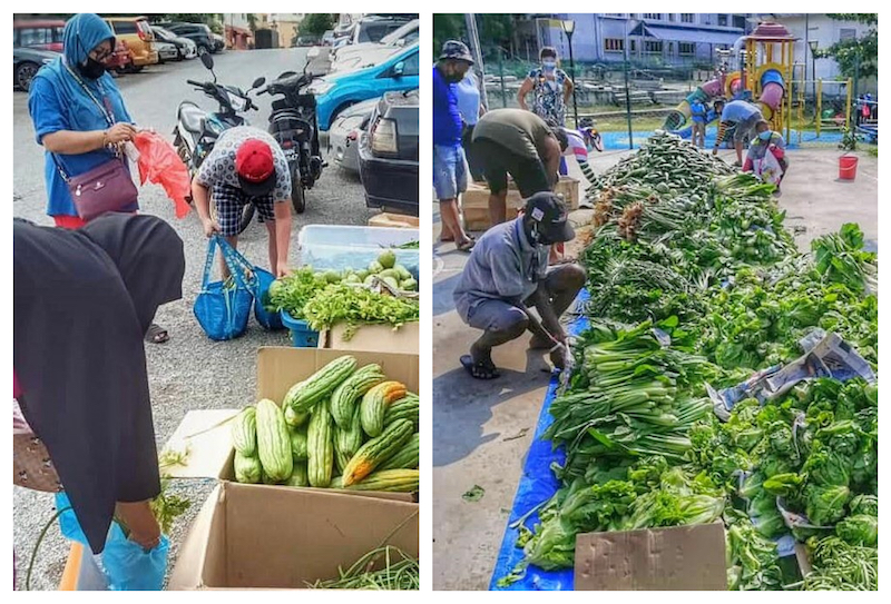 Some B40 communities collecting fresh vegetables that were distributed by TLFP members. — Picture courtesy of Aishwarya Adaikalaraj