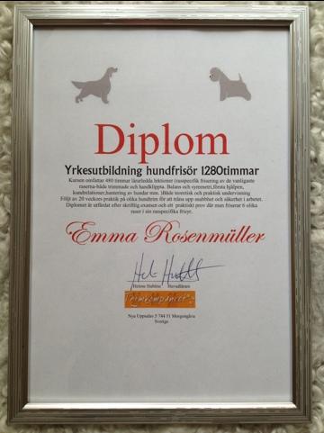 Diplomerad Hundfrisör