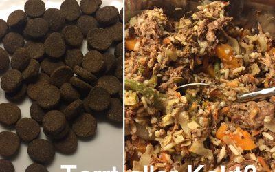 Hundmat…torrt, rått eller kokt?