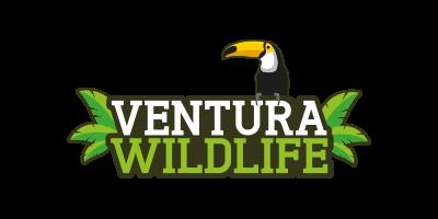 Ventura Wildlife