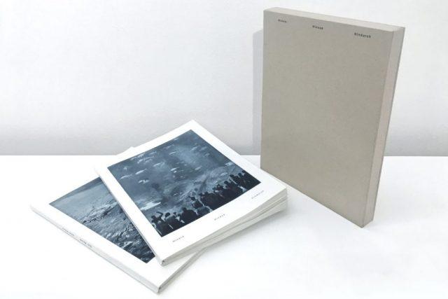 Hinein – hinaus – hindurch (36 views through water)