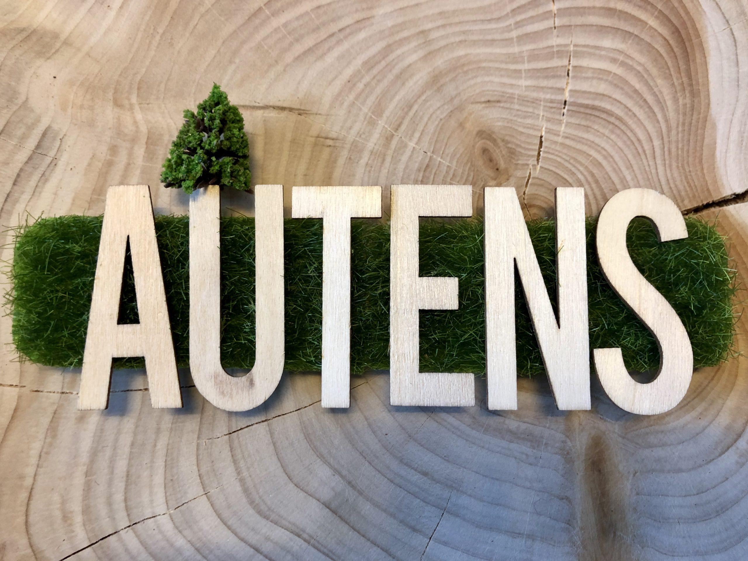 """Autens at """"Danmarks Læringsfestival"""""""