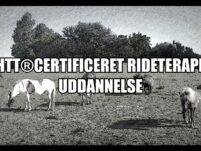 AVHTT®Certificeret og Eksamineret Rideterapeut