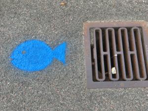 Blå fisk ved gaderist