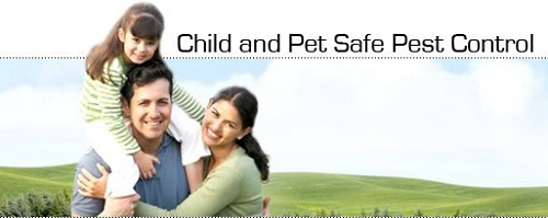 Pets and Kids safe pest control Brampton AwesomePest