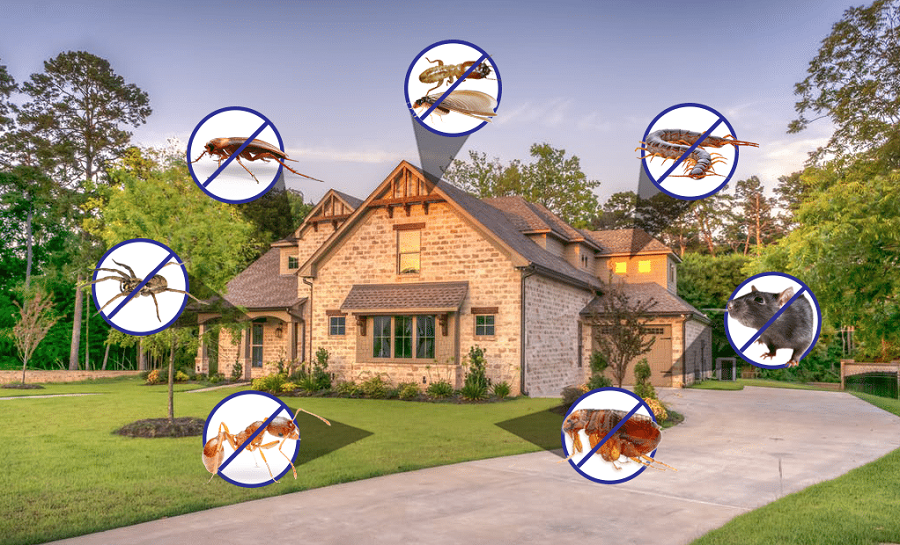 Pest Control Mississauga AwesomePest Control