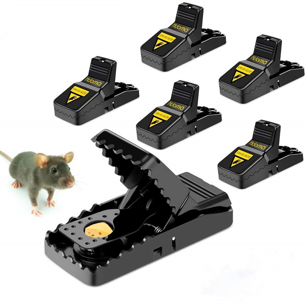 Mice Traps Awesomepest