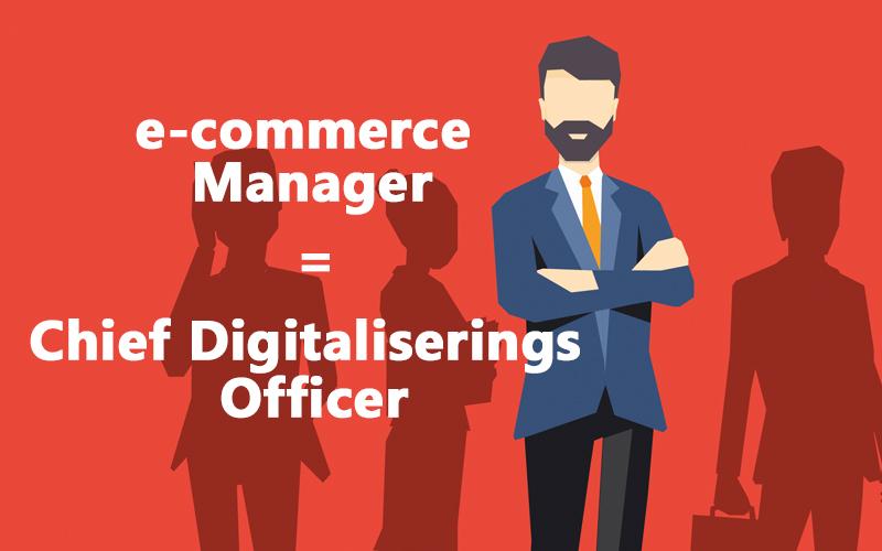 e-commerce manager b2b