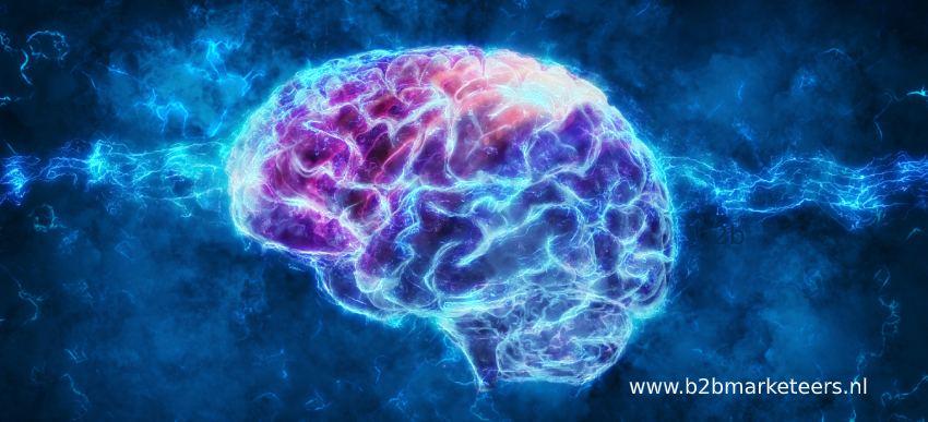 content marketing tactieken brain