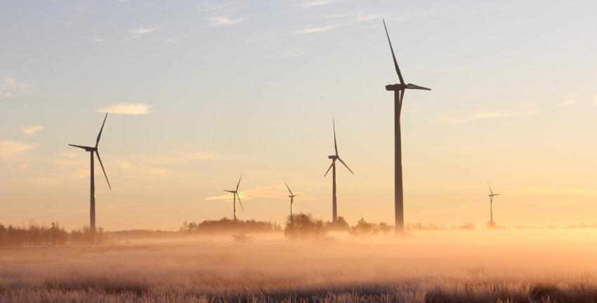 Energie vergelijken zakelijk: hoe pak je dit aan en wat levert het op?