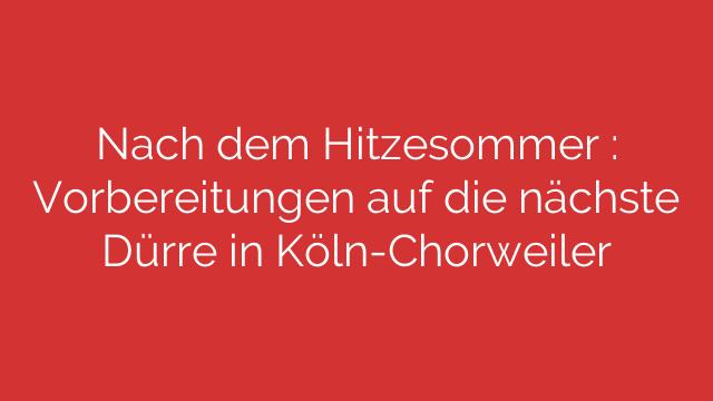 Nach dem Hitzesommer  Vorbereitungen auf die nächste Dürre in KölnChorweiler