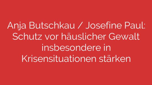 Anja Butschkau  Josefine Paul Schutz vor häuslicher Gewalt insbesondere in Krisensituationen stärken