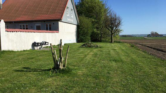Grøn plæne med lille stenterrasse.