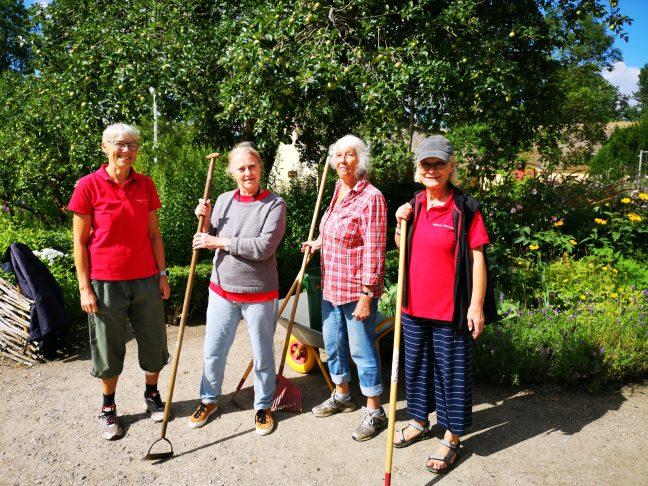 4 damer med haveredskaber, foran en have.