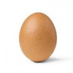 Æggequiz i åbningstiden