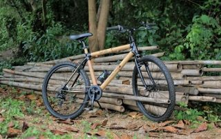 Bambuckel bicycle for sale
