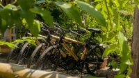 Bamboo Bicycles waiting for a tour