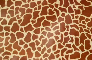 african theming - leopard