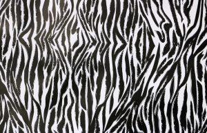 african theming - zebra