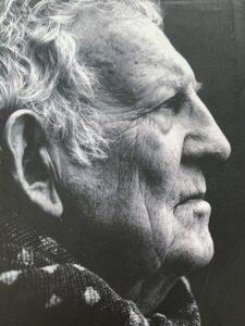 Afbeelding van Hugo Claus, schrijver van Het verdriet van België