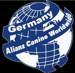 Internationaler Dachverband