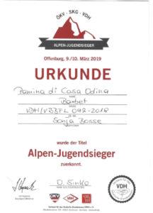 Alpenjugendsieger