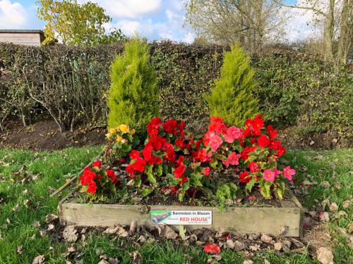 Barmston in Bloom