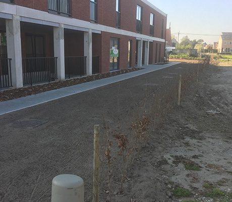 Voorzien van een groene zone rond een appartementsgebouw te Mol