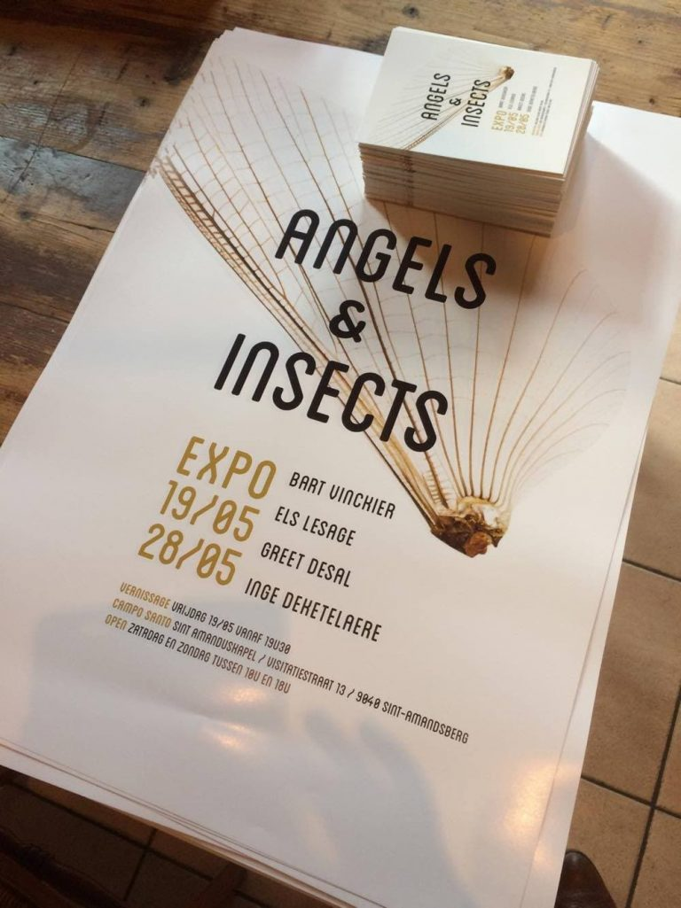 Angels and insects expo Campo Santo Gent
