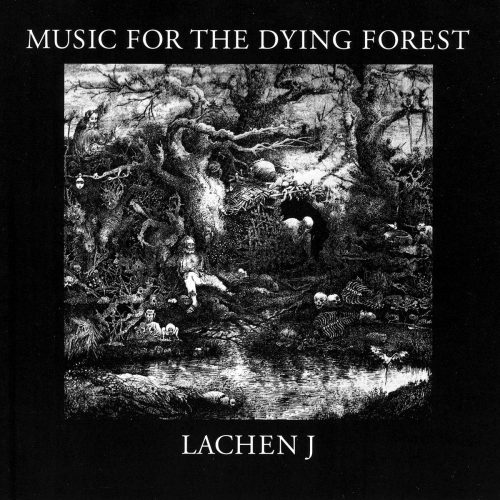 Lachen J - Music for the dying forest