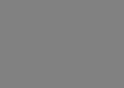 Bauta Classics logotype