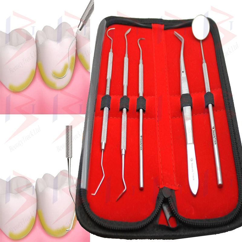 BeautyTrack Dental Sticks For Teeth Care And Oral Care Tooth Pick Set 4