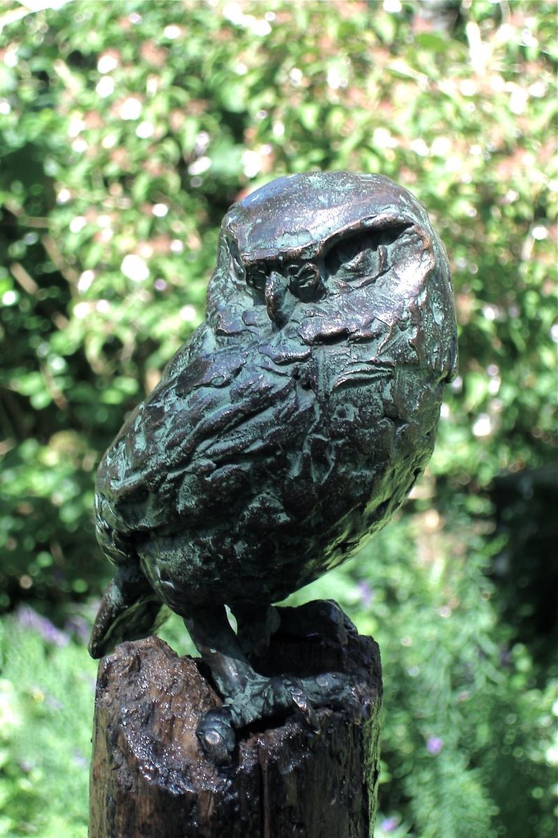 steenuiltje brons