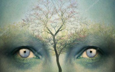 Neuroplastic Thinking