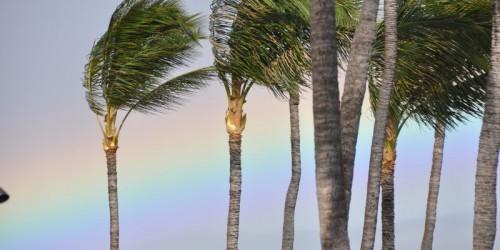 2010-08-Maui-Hawaii-112-e1487324106545