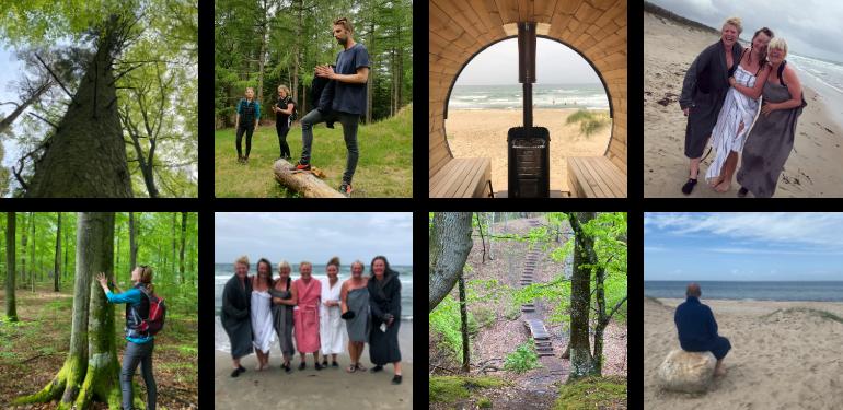 Livskraft – vandring og saunagus