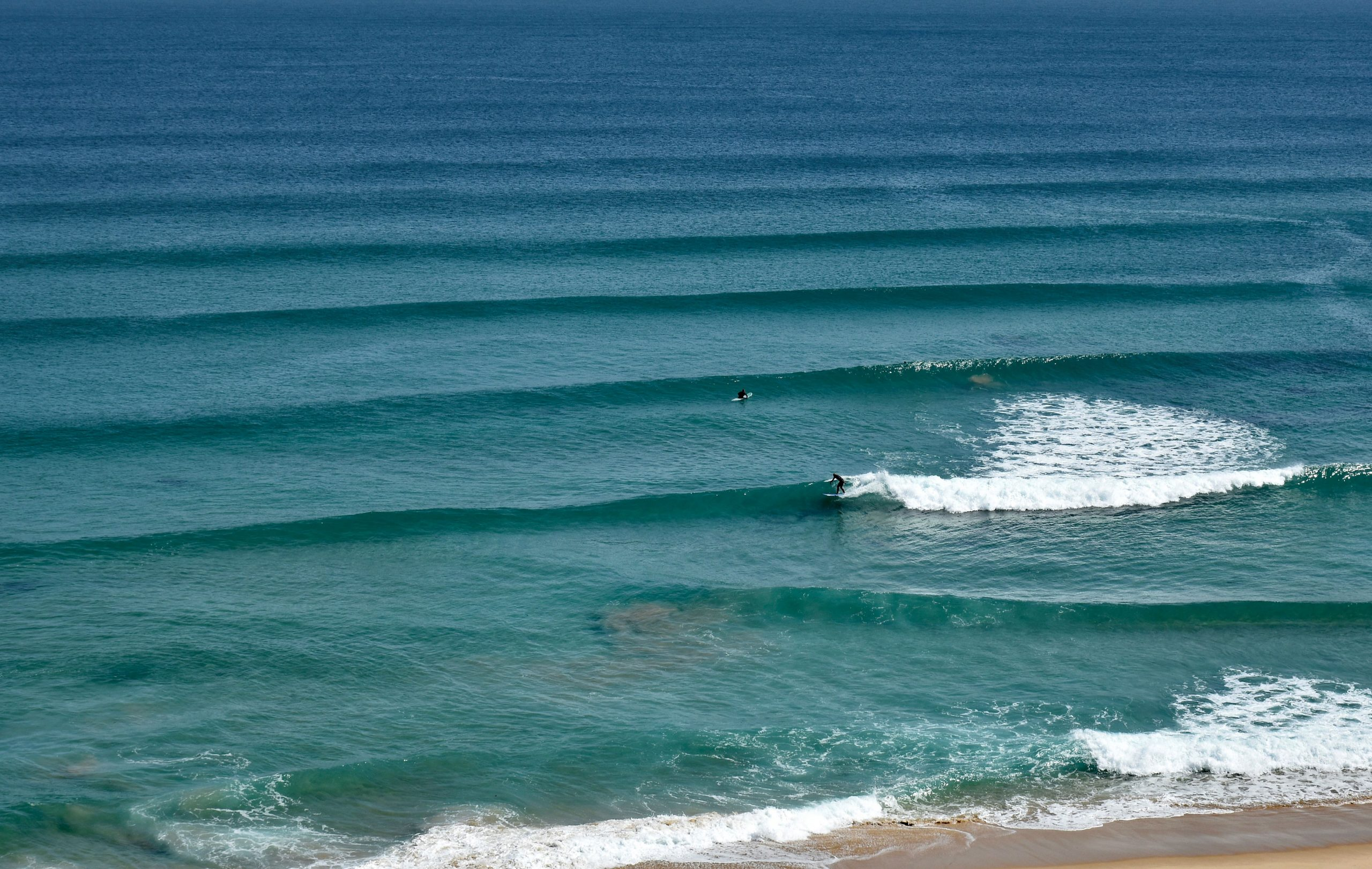 surfing Melbourne