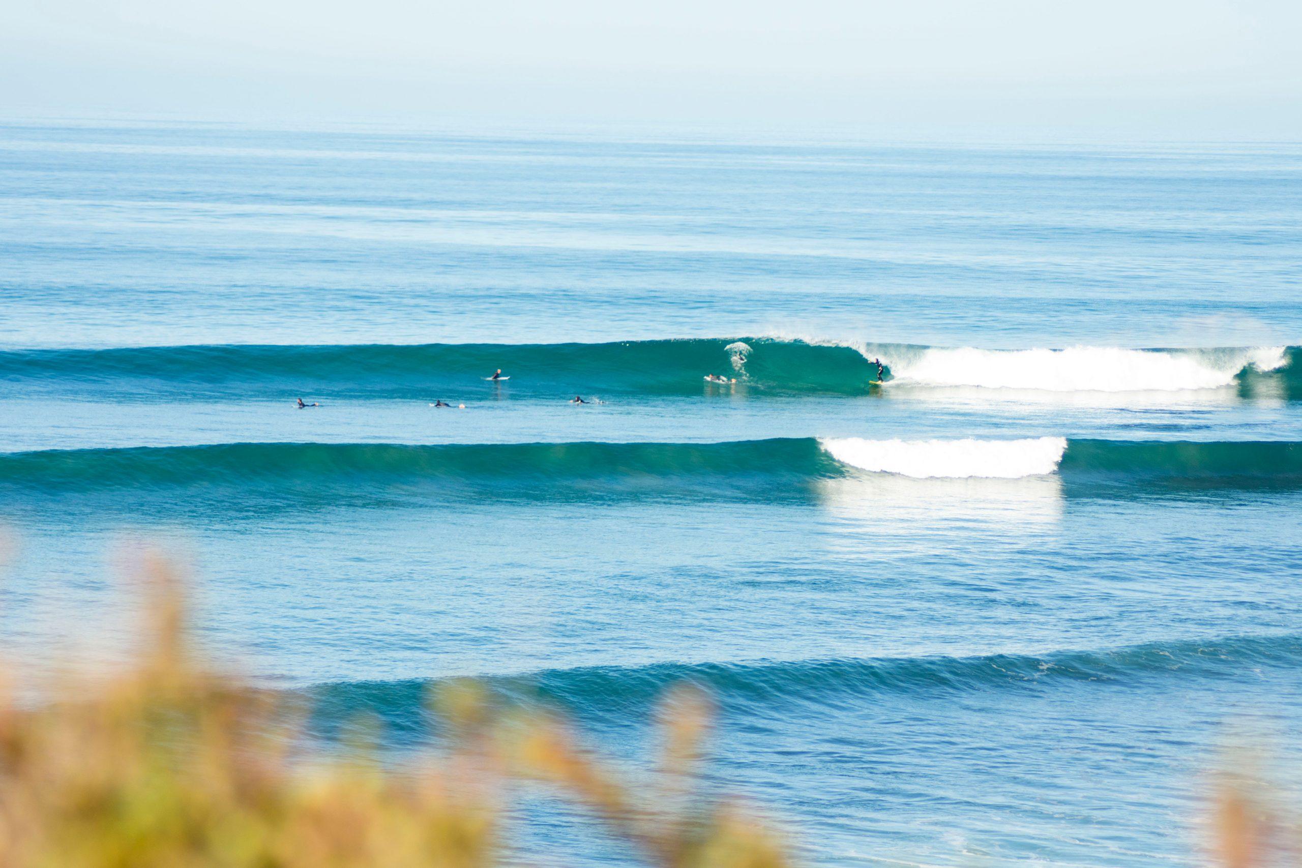 surf sots in Melbourne