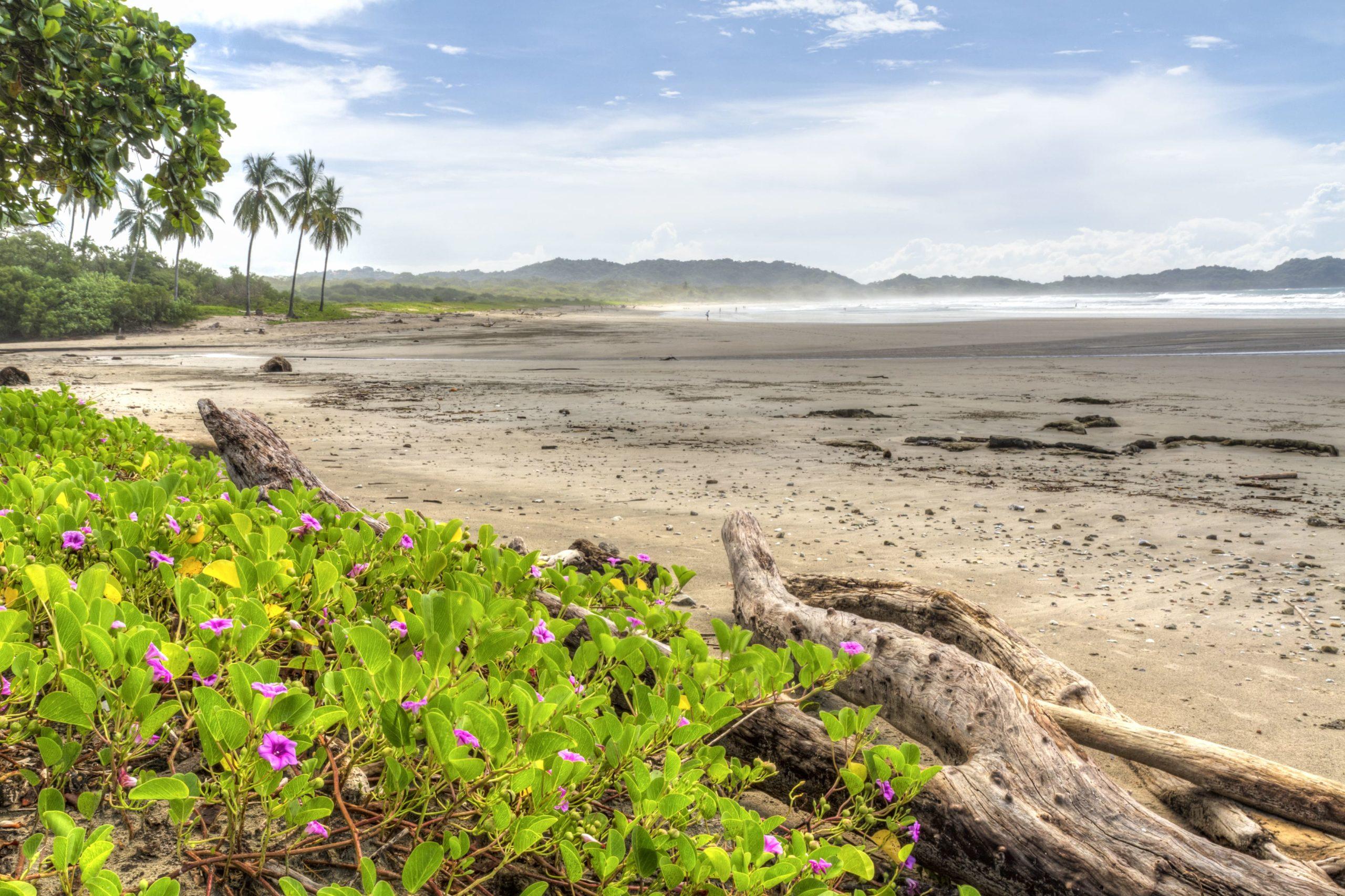 Playa Nosara Surf Spot