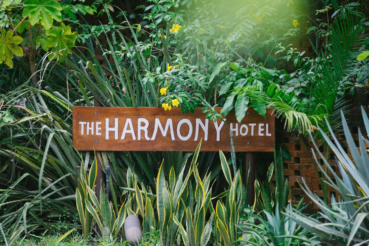 surf hotels in nosara costa rica