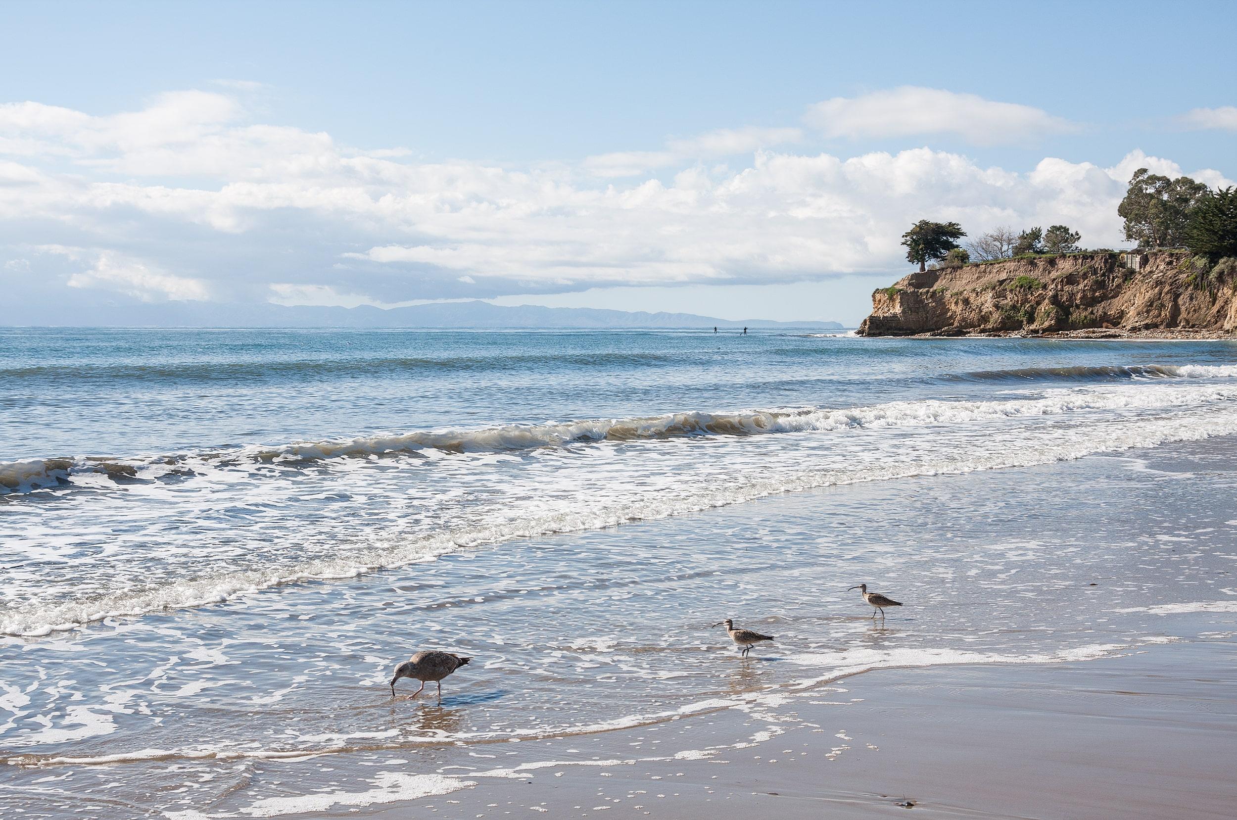 Surfing Santa Barbara - Leadbetter Beach