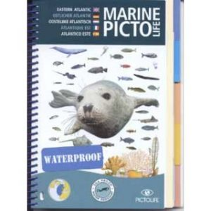 Visherkenning Marine-Picto Oostelijk Atlantisch