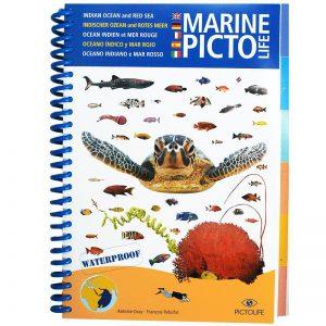 """Marine Picto: """"Indische Oceaan & Rode Zee"""""""