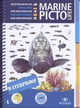 Visherkenning Marine-Picto Mediteraanse Zee