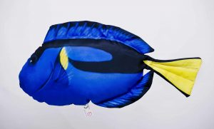 Gaby Picasso Doktervis Dory viskussen